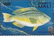 Mali 1997 Marine Life q
