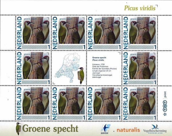 Netherlands 2011 Birds in Netherlands MS16