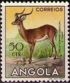 Angola 1953 Animals from Angola f