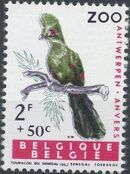Belgium 1962 Birds of Antwerp Zoo c