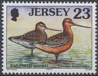 Jersey 1999 Seabirds and waders (4th Issue) a