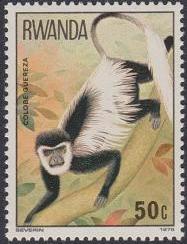 Rwanda 1978 Apes c