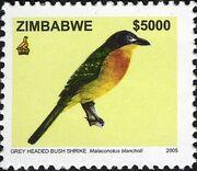 Zimbabwe 2005 Birds from Zimbabwe b