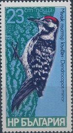 Bulgaria 1978 Woodpeckers e