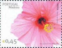 Madeira 2006 Madeira Flowers o