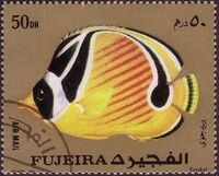 Fujeira 1972 Exotic Fishes e