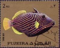 Fujeira 1972 Exotic Fishes h