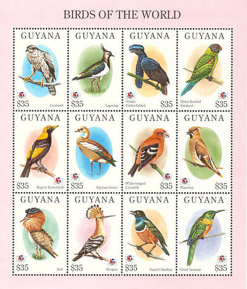 Guyana 1994 Birds of the World (PHILAKOREA '94) SSa1