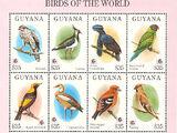 Guyana 1994 Birds of the World (PHILAKOREA '94)