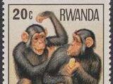 Rwanda 1978 Apes