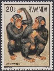 Rwanda 1978 Apes a