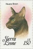 Sierra Leone 1993 Cats of the World w