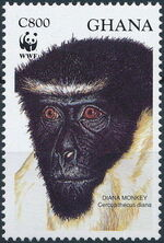 Ghana 1994 WWF - Diana Monkeys d