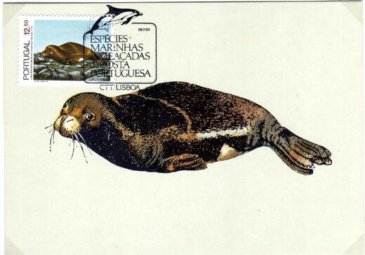 Portugal 1983 Brasiliana 83 - International Stamp Exhibition - Marine Mammals h