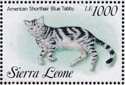 Sierra Leone 1993 Cats of the World zb