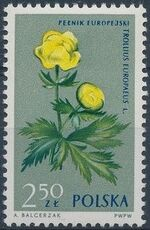 Poland 1962 Protected Flowers j