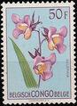 Belgian Congo 1953 Flowers d.jpg