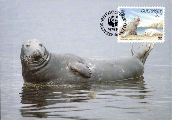 Guernsey 1990 WWF Marine Life q