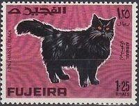 Fujeira 1967 Cats e