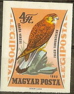 Hungary 1962 65th Anniversary of the Agricultural Museum - Birds of Prey p