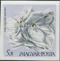 Hungary 1968 Domestic Cats ah