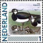 Netherlands 2011 Birds in Netherlands a30
