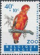 Belgium 1962 Birds of Antwerp Zoo a