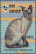 Gambia 1993 Oriental Cats m
