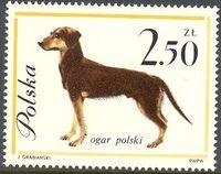 Poland 1963 Dogs g