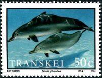 Transkei 1991 Dolphins c