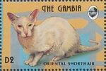 Gambia 1993 Oriental Cats i