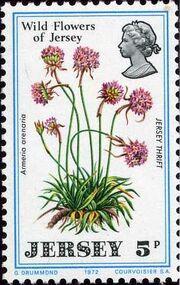 Jersey 1972 Jersey Wild Flowers b