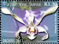 Papua New Guinea 2013 Orchids b