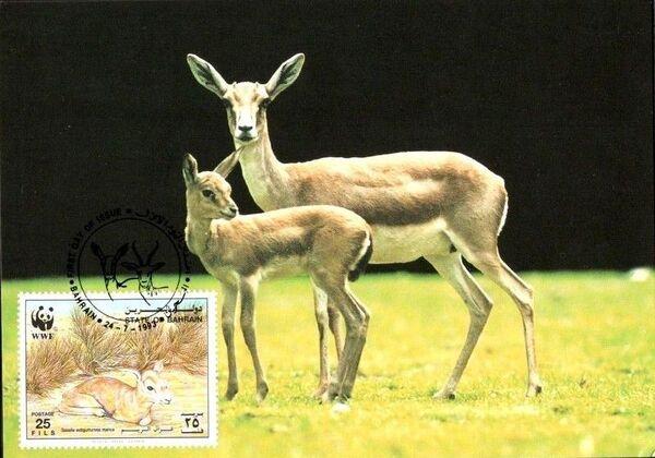 Bahrain 1993 WWF - Sand Gazelle MCb