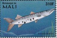 Mali 1997 Marine Life zj