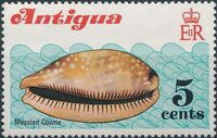 Antigua 1972 Sea Shells b