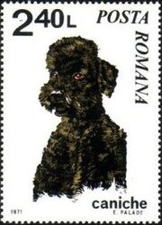 Romania 1971 Dogs f