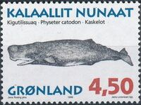 Greenland 1996 Whales d