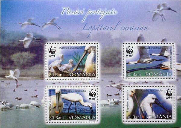 Romania 2006 WWF Eurasian Spoonbill h