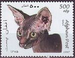 Afghanistan 1997 Cats f