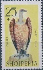 Albania 1966 Birds of Prey d