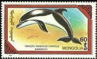 Mongolia 1990 Marine Mammals e