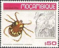 Mozambique 1980 Ticks from Mozambique a