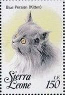 Sierra Leone 1993 Cats of the World k