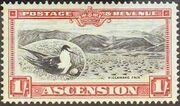 Ascension 1934 George V and Sights of Ascension h