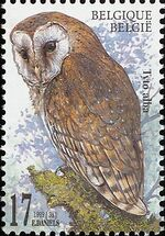 Belgium 1999 Owls a