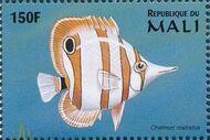 Mali 1997 Marine Life d