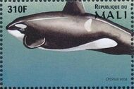 Mali 1997 Marine Life zf