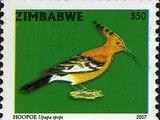 Zimbabwe 2007 Birds from Zimbabwe