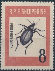 Albania 1963 Insects - Beetles c